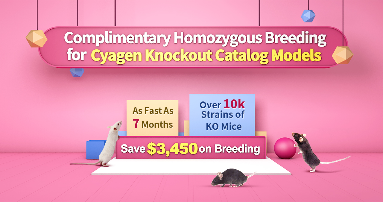 Complimentary Homozygous Breeding for Cyagen Catalog Knockout Mouse Models - Over 10k Strains of KO Mice   As Fast As 7 Months   Save $3,450 on Breeding