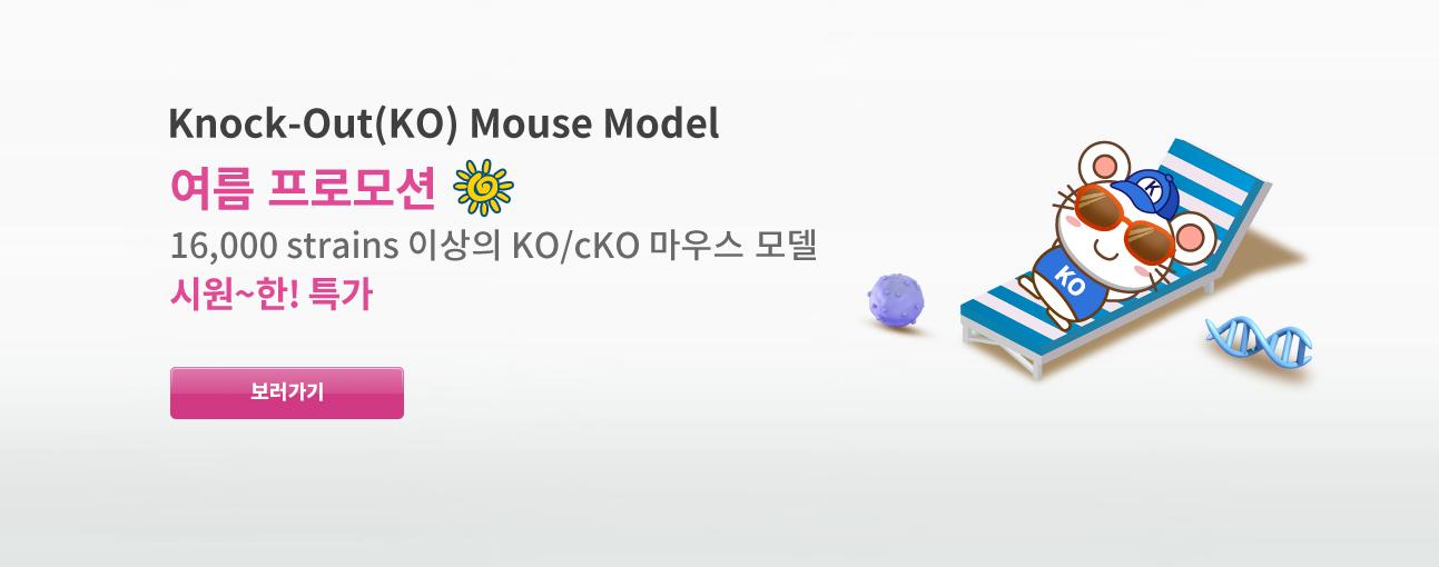 KO Mouse Model 시원~한! 특가