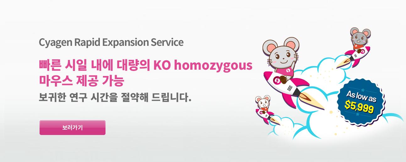 Rapid Expansion KO homozygotes